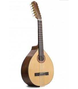 Laud Prudencio Saez modelo 55