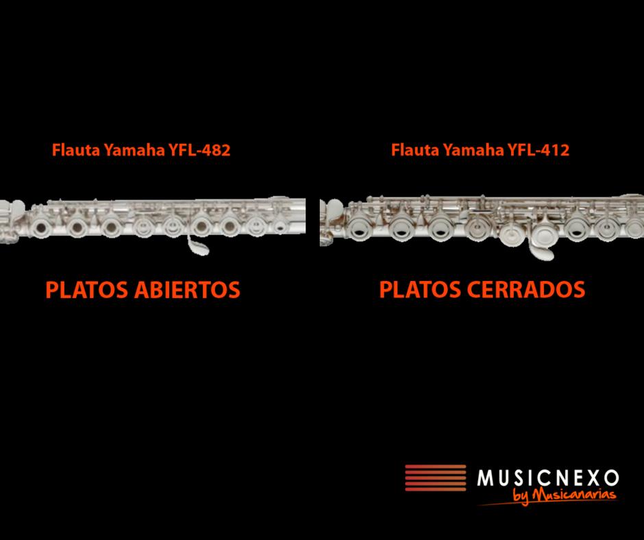 Tipos de plato de flauta